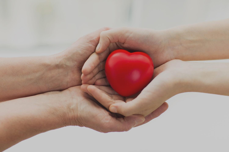 Hand holding heart - Charities
