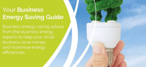 Your Business Energy Saving Guide Image with lighbulb