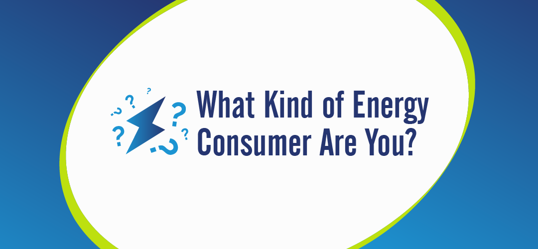 what kind of energy consumer are you