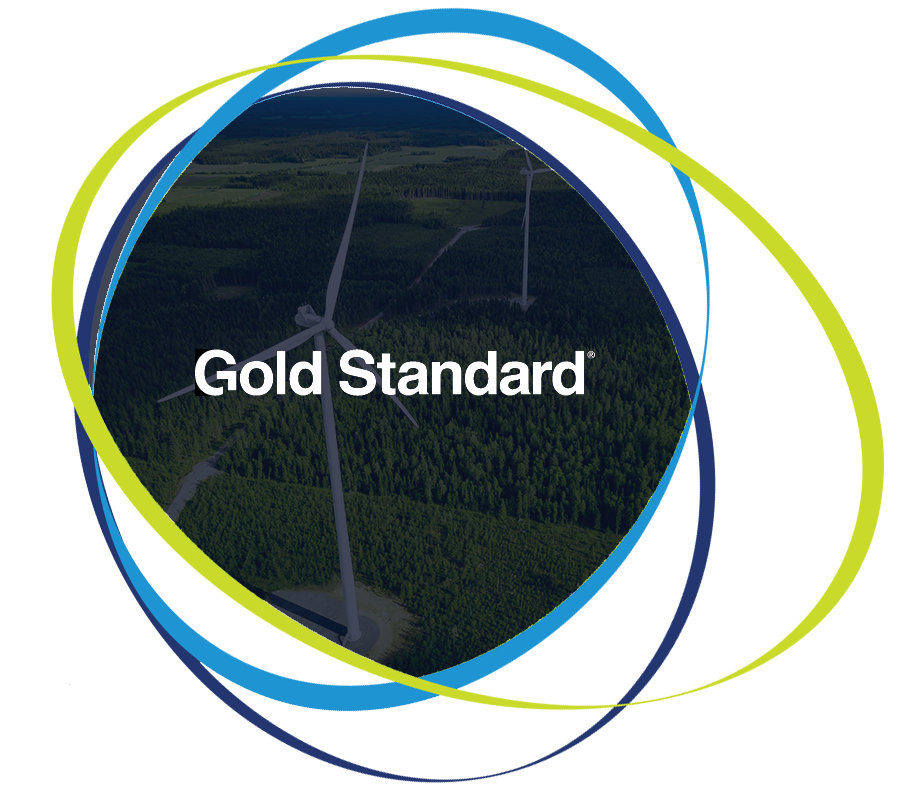 NetZero_Gold Standard